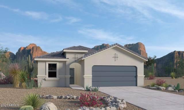 9689 E Alfalfa Drive, Florence, AZ 85132 (MLS #6286328) :: Service First Realty