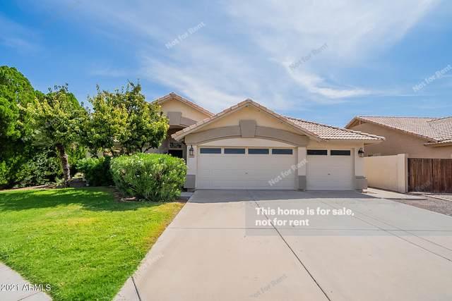 111 N Redrock Street, Gilbert, AZ 85234 (MLS #6286464) :: Elite Home Advisors