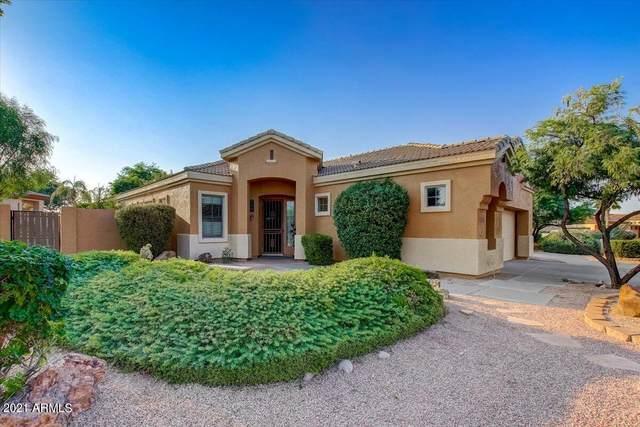 6746 S Pinehurst Drive, Gilbert, AZ 85298 (MLS #6286468) :: Elite Home Advisors