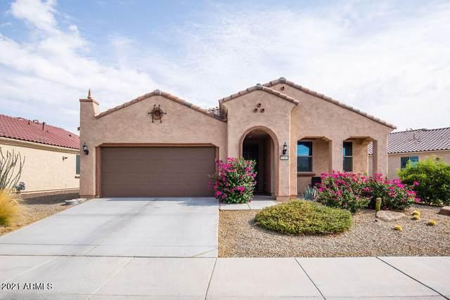 26404 W Zachary Drive, Buckeye, AZ 85396 (MLS #6286486) :: Klaus Team Real Estate Solutions