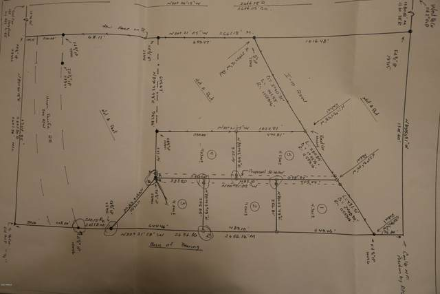 TBD N Caballo 1 Trail, Benson, AZ 85602 (MLS #6286517) :: Service First Realty