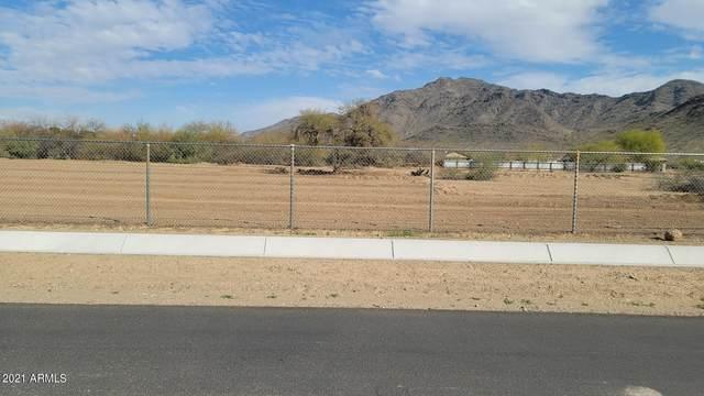 XXXX S 45th Avenue, Laveen, AZ 85339 (MLS #6286529) :: Hurtado Homes Group