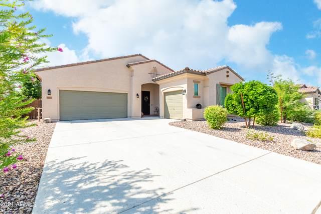 13771 W Creosote Drive, Peoria, AZ 85383 (MLS #6286567) :: Nate Martinez Team