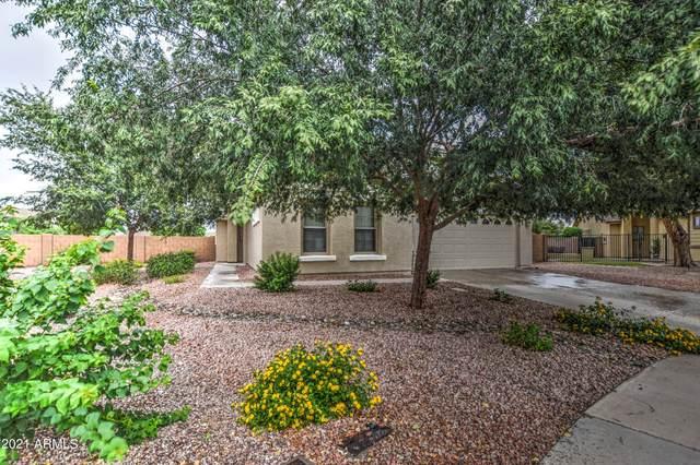 2572 W Bow Court, Queen Creek, AZ 85142 (MLS #6286748) :: My Home Group