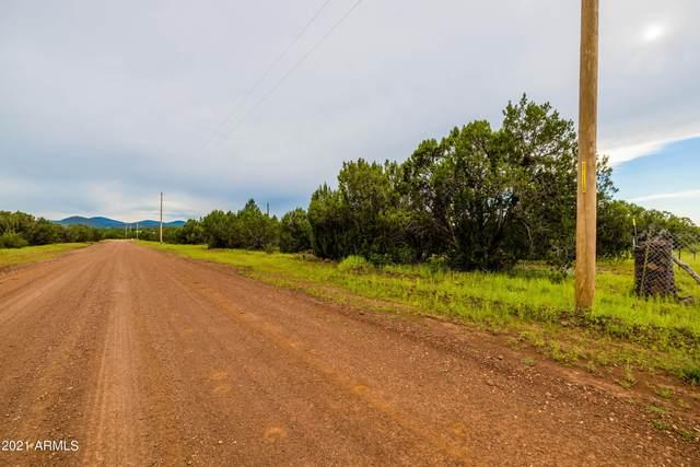 11 County Road 3197, Vernon, AZ 85940 (MLS #6286791) :: The Daniel Montez Real Estate Group