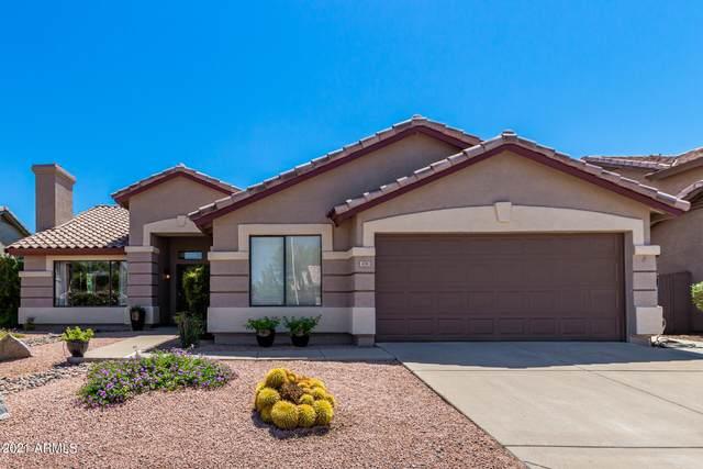 4331 E Coolbrook Avenue, Phoenix, AZ 85032 (MLS #6286803) :: Yost Realty Group at RE/MAX Casa Grande