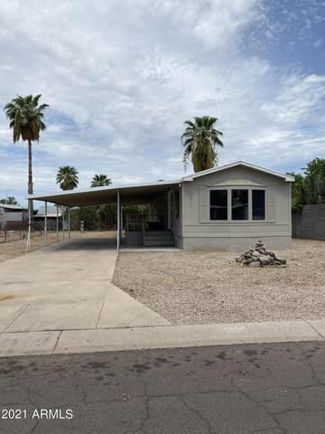 7906 E Javelina Avenue, Mesa, AZ 85209 (MLS #6286882) :: The Bole Group   eXp Realty