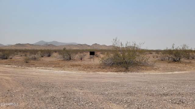 15XX N 434th Avenue, Tonopah, AZ 85354 (MLS #6286885) :: Fred Delgado Real Estate Group