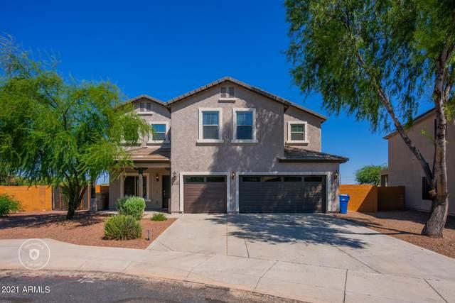 26204 W Potter Drive, Buckeye, AZ 85396 (MLS #6286916) :: Yost Realty Group at RE/MAX Casa Grande