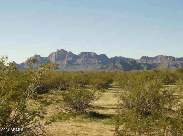 0 W 532 Avenue, Tonopah, AZ 85354 (MLS #6286946) :: The Daniel Montez Real Estate Group