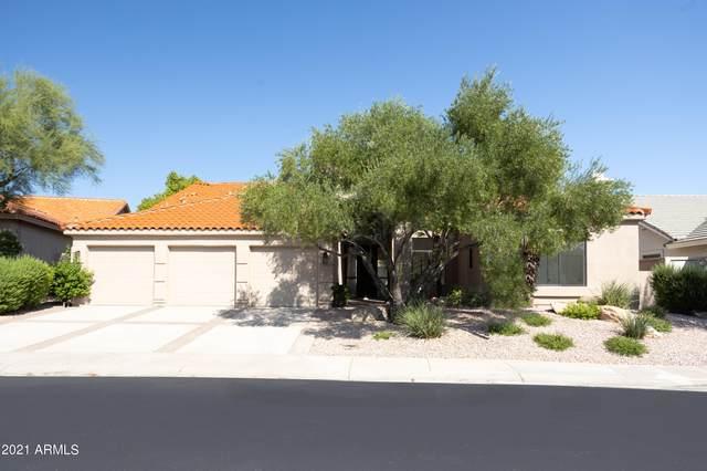 9155 N 117TH Way, Scottsdale, AZ 85259 (MLS #6286952) :: Yost Realty Group at RE/MAX Casa Grande