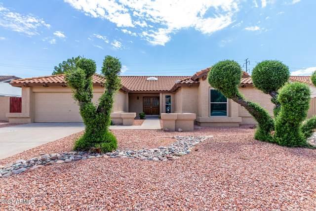 10323 E Becker Lane, Scottsdale, AZ 85260 (MLS #6286985) :: Elite Home Advisors