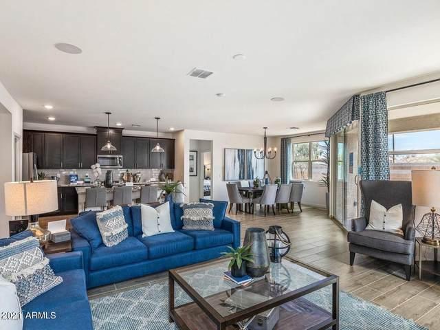 33935 N Desert Star Drive, Queen Creek, AZ 85142 (MLS #6287050) :: My Home Group