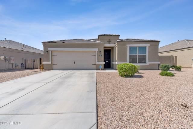 525 W Danish Red Trail, San Tan Valley, AZ 85143 (MLS #6287099) :: My Home Group