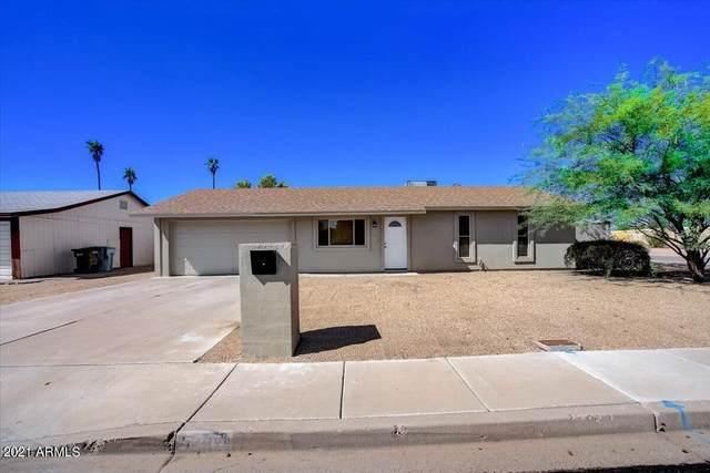 3332 E Acoma Drive, Phoenix, AZ 85032 (MLS #6287138) :: Yost Realty Group at RE/MAX Casa Grande