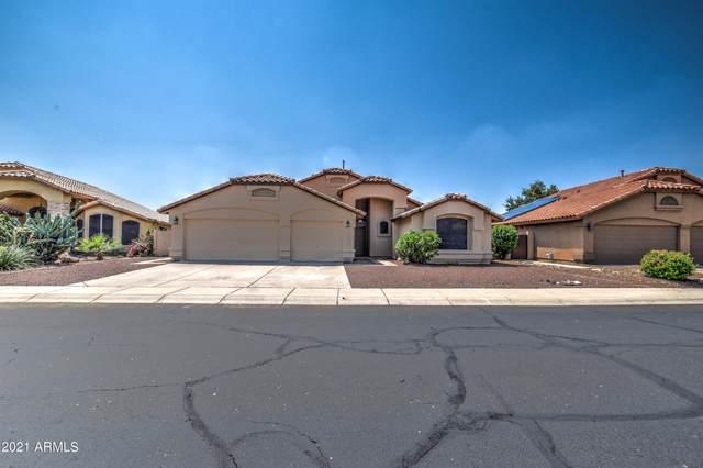 2356 N 123RD Drive, Avondale, AZ 85392 (MLS #6287143) :: ASAP Realty