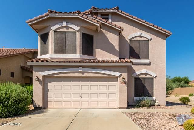 1036 E Monona Drive, Phoenix, AZ 85024 (MLS #6287177) :: The Ellens Team
