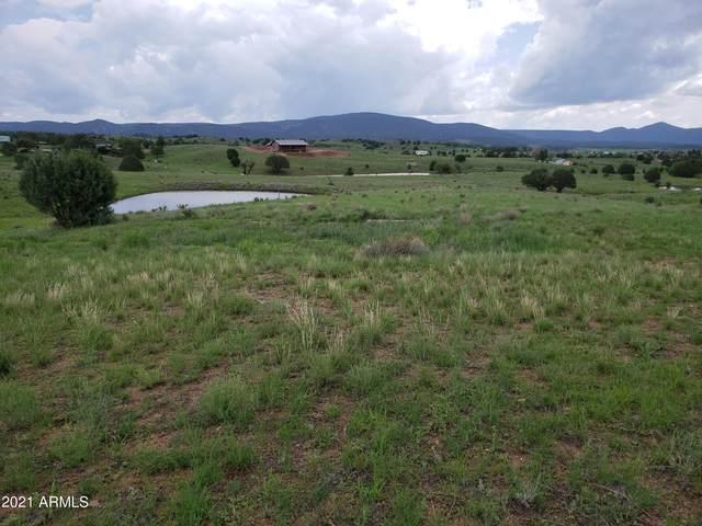 4F N Navajo Trail, Young, AZ 85554 (MLS #6287214) :: Elite Home Advisors