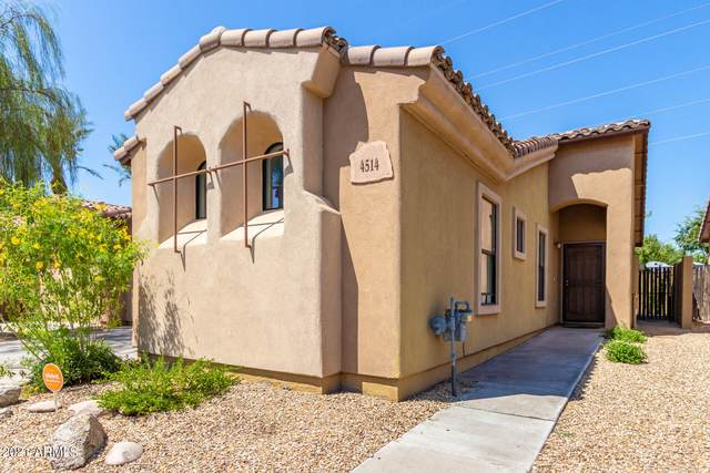 4514 W Sophie Lane, Laveen, AZ 85339 (MLS #6287248) :: The Dobbins Team