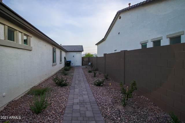 8022 W Wood Lane, Phoenix, AZ 85043 (MLS #6287265) :: Executive Realty Advisors