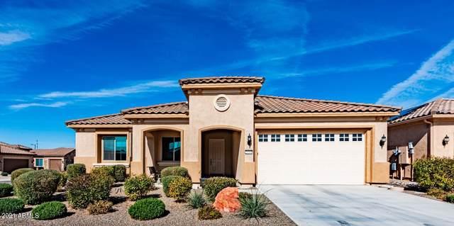 26568 W Cat Balue Drive, Buckeye, AZ 85396 (MLS #6287351) :: Yost Realty Group at RE/MAX Casa Grande