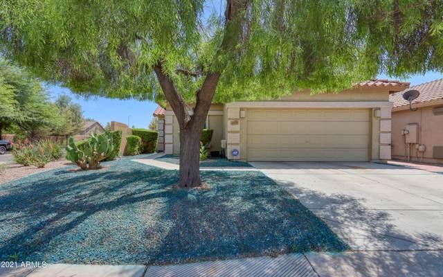 44479 W Yucca Lane, Maricopa, AZ 85138 (MLS #6287377) :: Klaus Team Real Estate Solutions