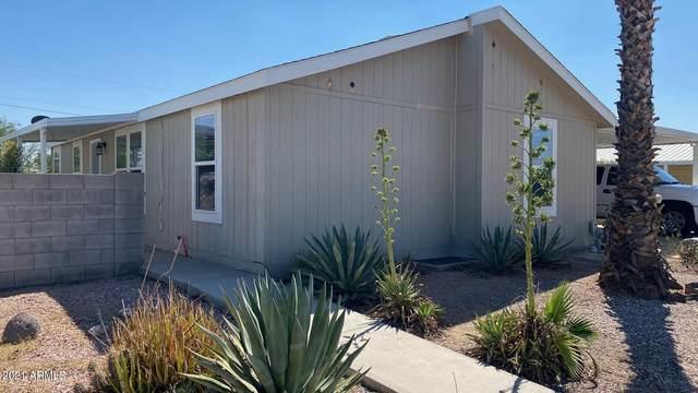 2909 E Piute Avenue, Phoenix, AZ 85050 (MLS #6287390) :: Executive Realty Advisors