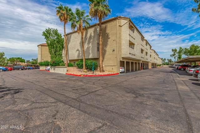 1331 W Baseline Road #141, Mesa, AZ 85202 (MLS #6287392) :: The Ellens Team