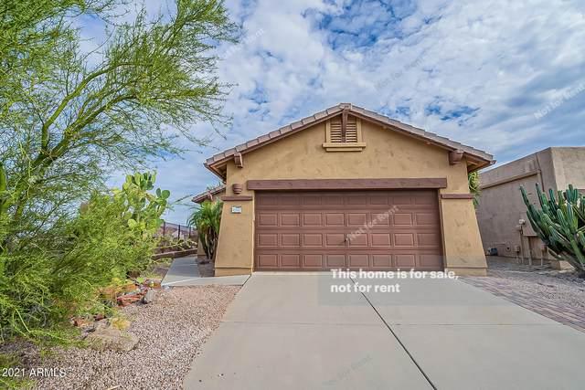 10592 E Second Water Trail, Gold Canyon, AZ 85118 (MLS #6287400) :: Elite Home Advisors