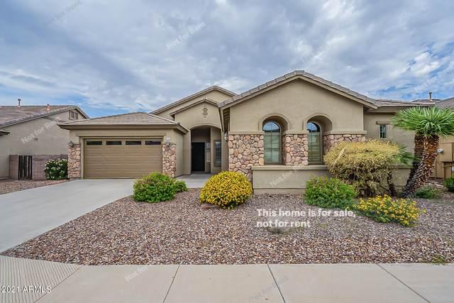 1544 E Grand Canyon Drive, Chandler, AZ 85249 (MLS #6287411) :: Elite Home Advisors