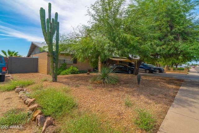 2213 W Aster Drive, Phoenix, AZ 85029 (MLS #6287520) :: Elite Home Advisors