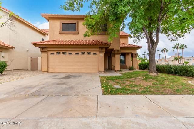 1237 W Mediterranean Drive W, Gilbert, AZ 85233 (MLS #6287566) :: Elite Home Advisors