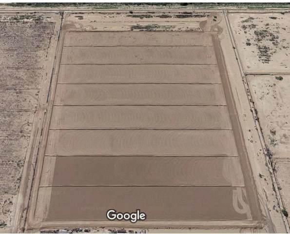 0 S Huddson, Eloy, AZ 85131 (MLS #6287594) :: Yost Realty Group at RE/MAX Casa Grande