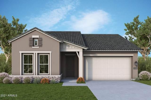 13233 W Horsetail Trail, Peoria, AZ 85383 (MLS #6287654) :: Elite Home Advisors