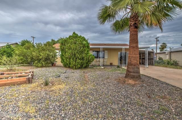 120 Debs Circle, Morristown, AZ 85342 (MLS #6287714) :: Executive Realty Advisors