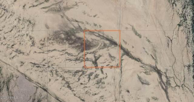 0 No Name Street, Eloy, AZ 85131 (MLS #6287739) :: Fred Delgado Real Estate Group