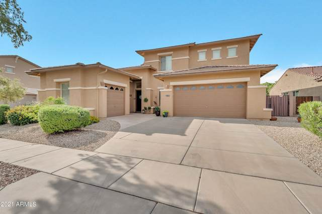 633 E Torrey Pines Place, Chandler, AZ 85249 (MLS #6287755) :: The Riddle Group