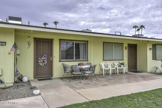 13631 N Newcastle Drive, Sun City, AZ 85351 (MLS #6287785) :: Executive Realty Advisors
