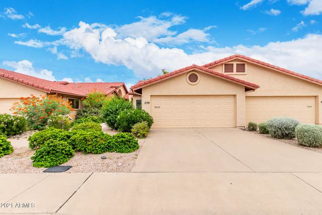 239 S Pioneer, Mesa, AZ 85204 (MLS #6287982) :: The Riddle Group