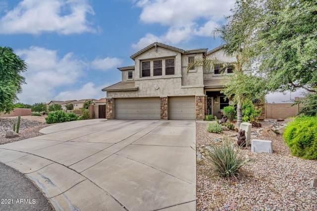 41578 N Vargas Drive, San Tan Valley, AZ 85140 (MLS #6288001) :: TIBBS Realty