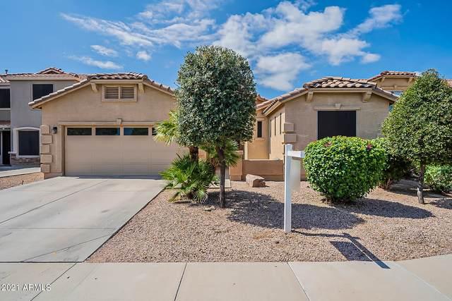 43505 W Wallner Drive, Maricopa, AZ 85138 (MLS #6288089) :: Midland Real Estate Alliance