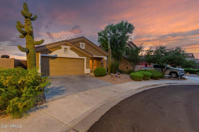 17377 W Coyote Trail Drive, Goodyear, AZ 85338 (MLS #6288173) :: Klaus Team Real Estate Solutions