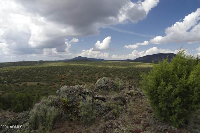 359 N Valhalla Way, Ash Fork, AZ 86320 (MLS #6288220) :: Yost Realty Group at RE/MAX Casa Grande