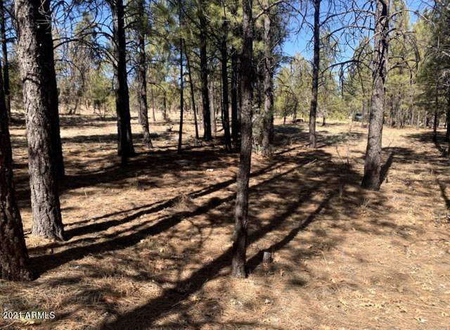 5236 Taos Circle, Happy Jack, AZ 86024 (MLS #6288228) :: Yost Realty Group at RE/MAX Casa Grande