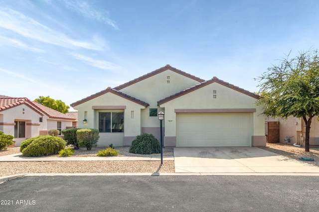 19541 N Carriage Lane, Surprise, AZ 85374 (MLS #6288249) :: Elite Home Advisors