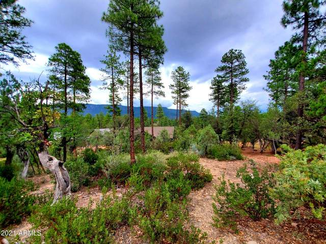 64 Forest Trail Camp, Pine, AZ 85544 (MLS #6288257) :: The Newman Team