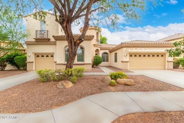 756 W Mesquite Lane, Litchfield Park, AZ 85340 (MLS #6288485) :: neXGen Real Estate