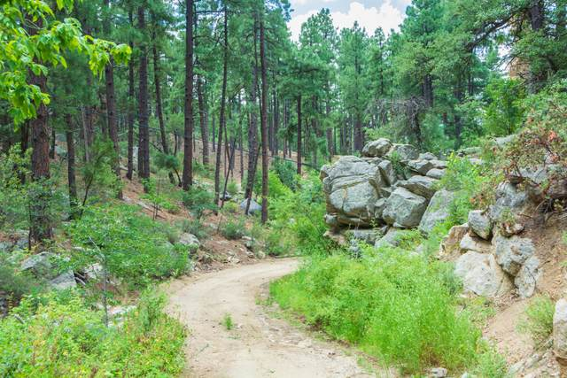 0000 S Tanager Ridge Way, Prescott, AZ 86305 (MLS #6288560) :: Executive Realty Advisors
