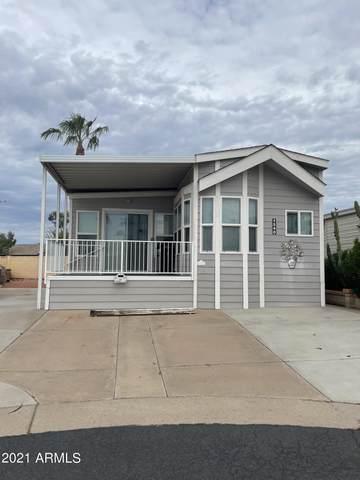 1540 W Yurok Avenue, Apache Junction, AZ 85119 (MLS #6288566) :: Elite Home Advisors