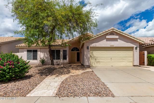 1422 W Mountain Sky Avenue, Phoenix, AZ 85045 (MLS #6288593) :: Elite Home Advisors